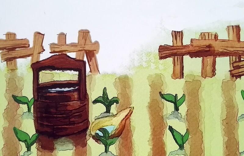 Ogródek z warzywami